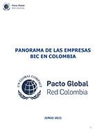 Panorama de las Empresas BIC en Colombia