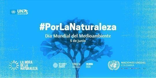 PorLaNaturalezaBlue
