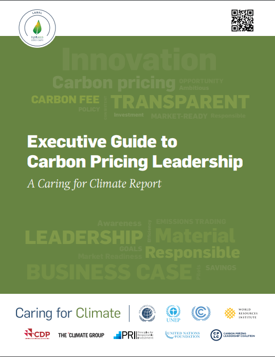 Executive Guide to Carbon Pricing
